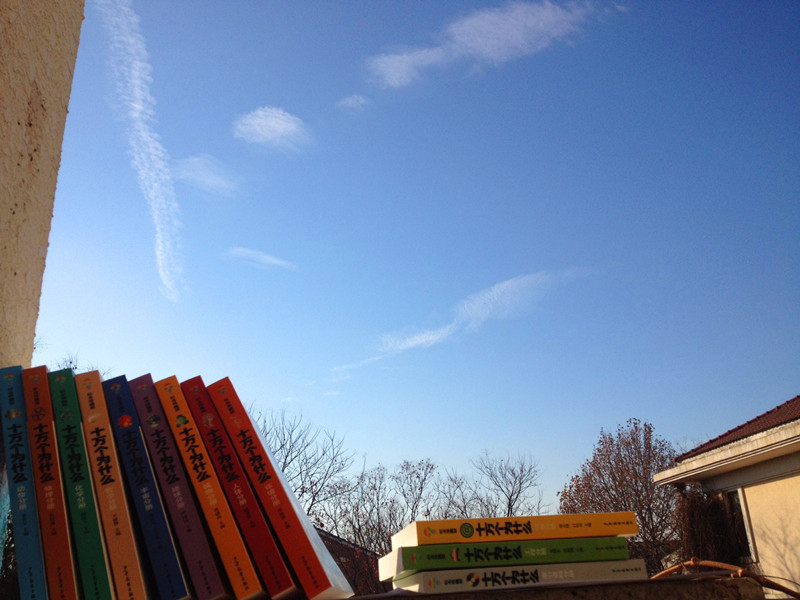 13套新书:一个公益青年的2013.jpg